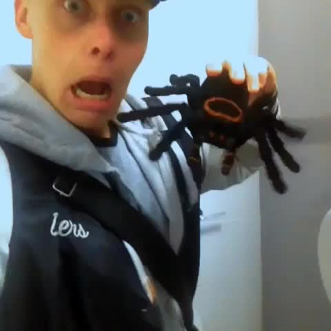 "Watch Jack Jones Tv's Vine ""Scary spider prank"""