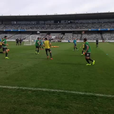 "Watch Socceroos's Vine ""FAN DAY 