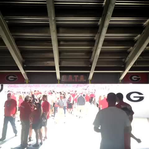 Good morning, Sanford Stadium. #TROYvsUGA - Georgia Bulldogss post on Vine