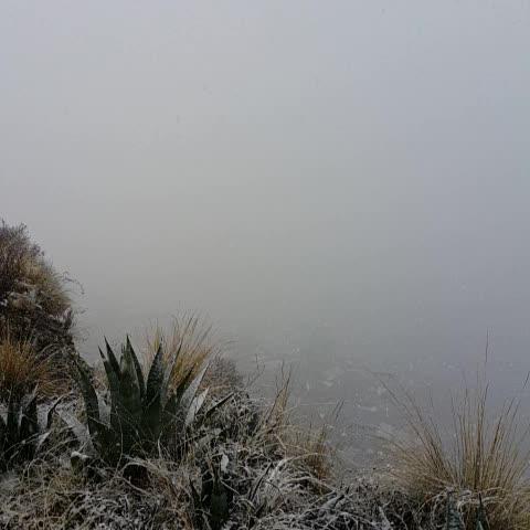 Vine by La Razón - Bolivia - La urbe paceña se cubre de nieve