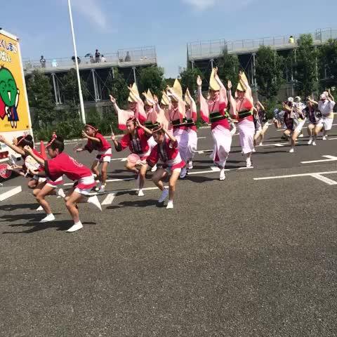 ただいま青赤横丁では徳島名物阿波おどりの演舞を実施中‼︎ #fctokyo - FC東京 広報部s post on Vine