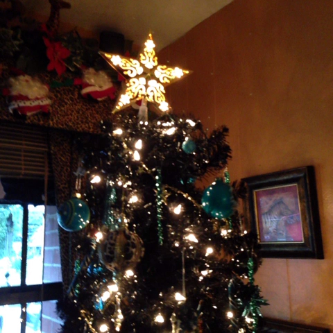 Doesn't feel like losing when you home to George Michael, a #Jaguars Christmas tree and cookies