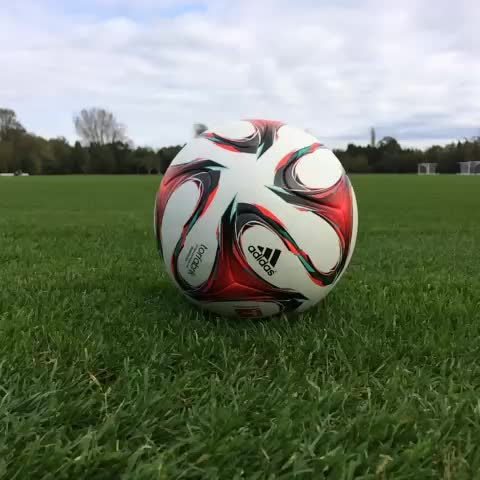 Chelsea FCs post on Vine - Can you guess which #CFC player is kicking the ball...? - Chelsea FCs post on Vine