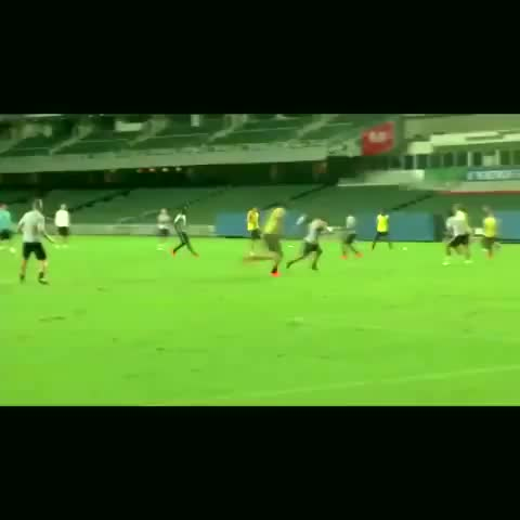 David RFs post on Vine - Zlatan is great | Grande Zlatan #Gol #crack #follow #like - David RFs post on Vine