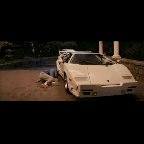 The Wolf Of Wall Streets post on Vine - #thewolfofwallstreet #wolfofwallstreet #scene #funny #lol #yolo #follow #like #revine #quaaludes - The Wolf Of Wall Streets post on Vine