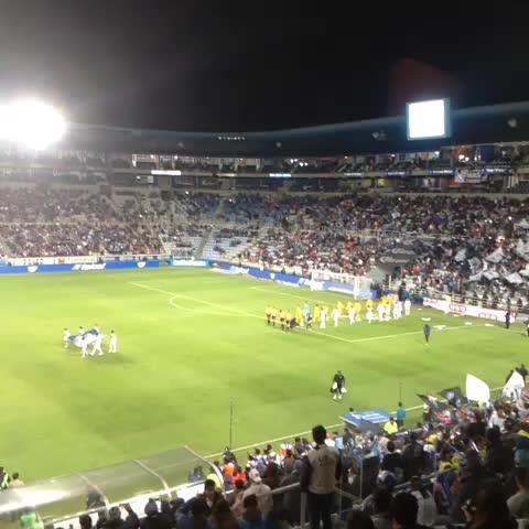 Club Tigres Oficials post on Vine - Por iniciar la Liguilla. - Club Tigres Oficials post on Vine