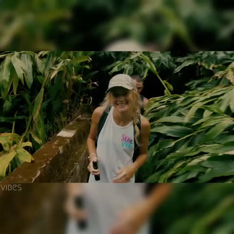 Vine by VIBES - Tropical adventures 🌴 #VIBES
