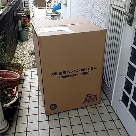 Vine by えびおねさん(ヾノ´・_・`) - デカペンペンとどいたぁぁぁぁぁぁぁぁぁぁぁぁぁ:;(∩´///`∩);: #2PM #JUNHO