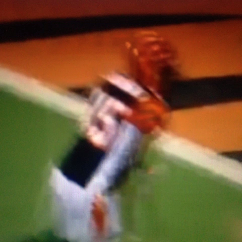 Jasonboiis post on Vine - Chad Johnson tries to hit Ray Lewis #raylewis #ochocinco - Jasonboiis post on Vine