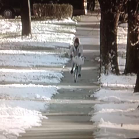Bike postman fail
