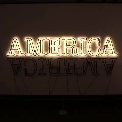Vine by Chris Pietsch - Double America 2 by Glenn Ligon, who is credited with being one of the founders of the Post-Black art movement.