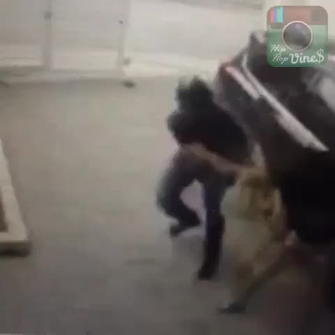 HipHopViness post on Vine - Purse snatcha picks wrong person... #gdamn #hewuzntrdy #killedit #hiphopvines #dontplay #foulplay #jeezy #ItsThaWorld2 #hiphopvine #vinez - HipHopViness post on Vine
