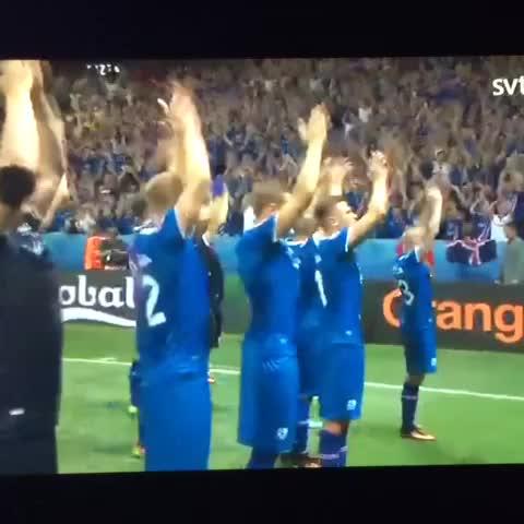إحتفالات لاعبي ايسلندا بعد التأهل التاريخي باليورو