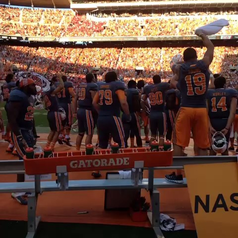 Vine by Morgan Gore - #vols hype!