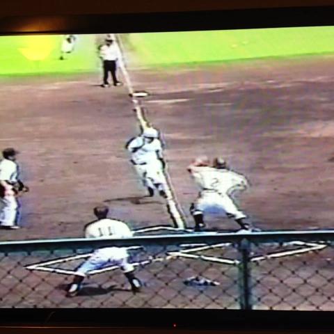Kristen Estess post on Vine - Take that ump! #funniestvideo #nutshot #baseball - Kristen Estess post on Vine