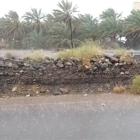 Vine by مركز العاصفة - #سلطنة_عمان: بالفيديو ، هطول امطار غزيرة على ولاية الحمراء ، تصوير بدر الحوسني #مركز_العاصفة
