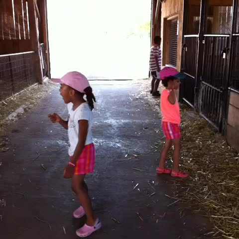 #ChonillaSisters in #French :-) today's word is #Sheep #lesson #funnykids #cutevine #learning