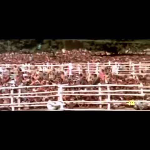 INC Indias post on Vine - जब तक मुझमें सांस है, तब तक सेवा ही नहीं जाएगी : Smt. #IndiraGandhi  #IronLeadersofINC - INC Indias post on Vine