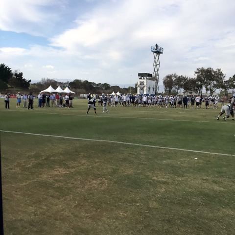 Dallas Cowboyss post on Vine - Romo to Dez for the TD #CowboysCamp - Dallas Cowboyss post on Vine
