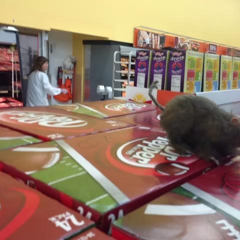 Walmart in Hiram lmao