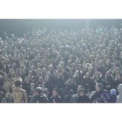 Will Smidleins post on Vine - My highschool student section after winning the football game last night #rollhud - Will Smidleins post on Vine