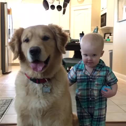 Vine by Beau - Best buds for life! 🐶❤👶🏼