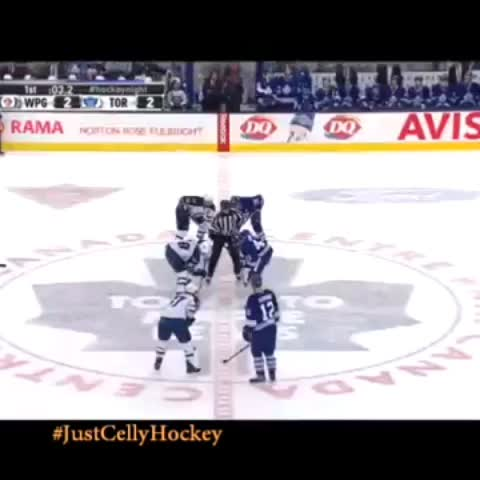 Just Celly Hockey™s post on Vine - When the Maple Leafs win the faceoff! 😂 #NHL #funnyhockey #sports #vine #loop - Just Celly Hockey™s post on Vine