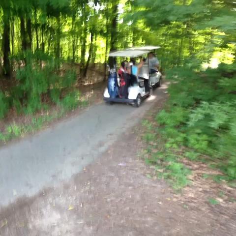 Reverse golfcart