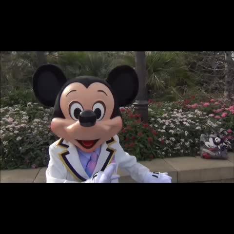 だいちゃんs post on Vine - ミッキー (ディレクター君) ある日のプラザグリがマジ神だった動画 ミュートしてます。だって奇声が酷かったから。オタというならミキオタに分類して! - だいちゃんs post on Vine