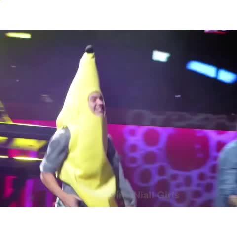 Niall Girlss post on Vine - Zayns reaction 😂😂 - Shay (09.28 Charlotte|YT kaylaasizemore) - Niall Girlss post on Vine