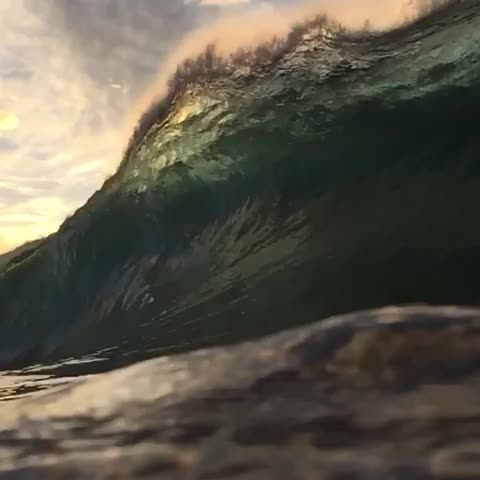 Vine by Ryan Pernofski - i could watch this all day