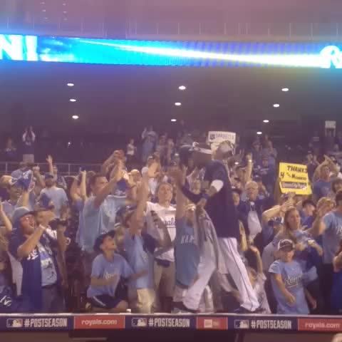 Kansas City Royalss post on Vine - This is for you, #Royals fans! #TakeTheCrown - Kansas City Royalss post on Vine