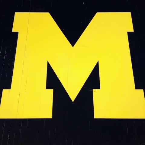 "Watch Michigan Basketball's Vine ""Do we have to spell it out for you? #HAIL"""