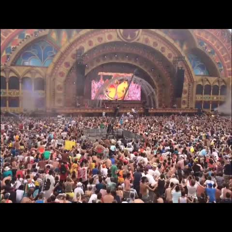 EDMvines post on Vine - Tomorrowland with DVBBS - EDMvines post on Vine