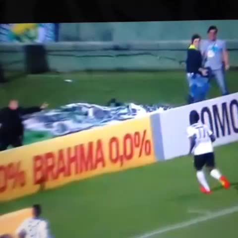 Talking Bawss post on Vine - Coritiba Striker Joel Falls Down Hole Celebrating Goal Against São Paulo - @TalkingBawss post on Vine