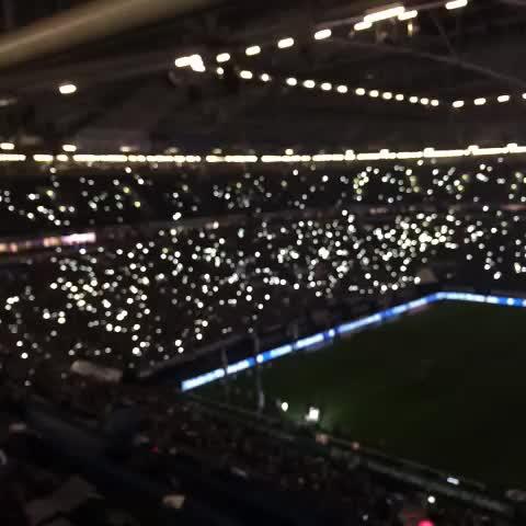 FC Schalke 04s post on Vine - Attacke, #S04! - FC Schalke 04s post on Vine