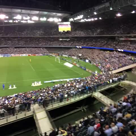 Melbourne Victorys post on Vine - Simply amazing atmosphere here tonight. Well done #mvfc fans #MelbDerby - Melbourne Victorys post on Vine