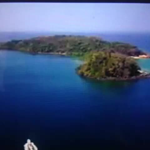 kitAnurags post on Vine - How to survive in an island: Bear Grylls Vs Bollywood. - kitAnurags post on Vine
