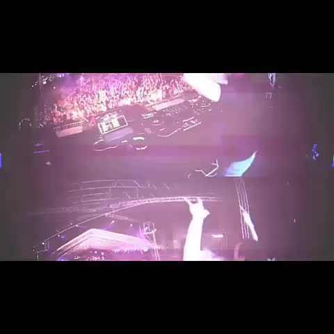 Music Vines post on Vine - Steve Aoki Stage Dive Trampoline FAIL! - Music Vines post on Vine
