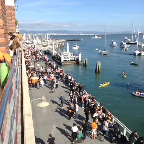 Aint no party like a #McCoveyCove partay! #OctoberTogether #SFGiants - CafeSFGs post on Vine