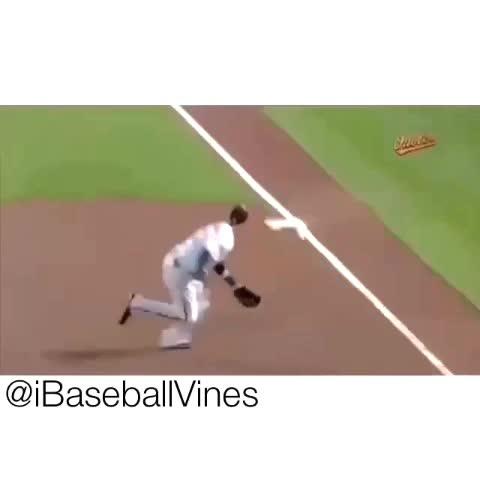 iBaseballViness post on Vine - ...⚾️ | What a play!✅ | Checkout our Instagram account! @iBaseballVines🆔 | Tags:#baseball #base #ball #TagsForLikes #bases #homerun #bat #t - iBaseballViness post on Vine
