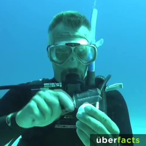 UberFactss post on Vine - If you crack an egg underwater, it will retain its original shape. #UberFacts - UberFactss post on Vine