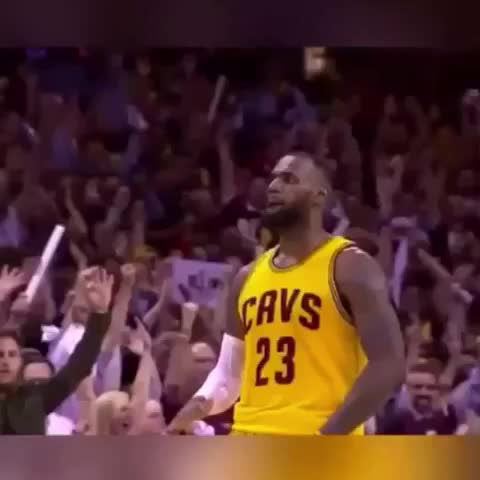 Vine by mike goldfarb - LeBron and the Cavs out here Hawk hunting ????????