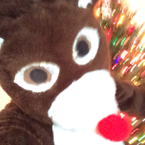 Logan Pauls post on Vine - Rudolph was gettin it!! (inspired by Jerry Purpdrank) #TurnUp - Logan Pauls post on Vine