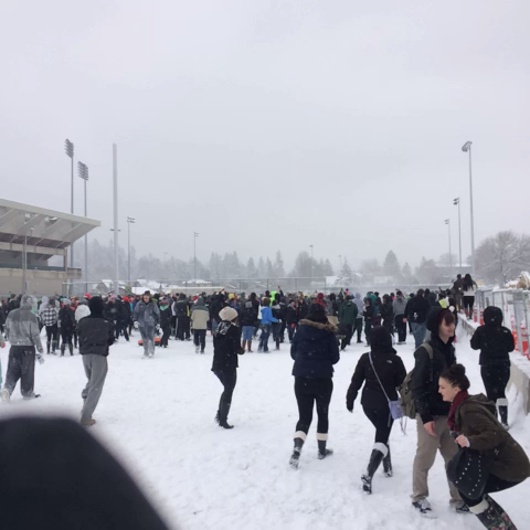 Snow brawl Eugene !! - BKELLEYs post on Vine
