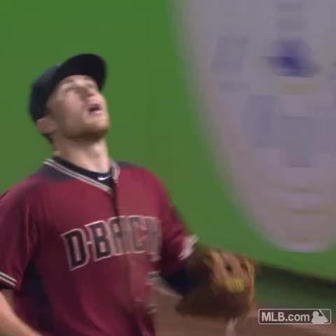 Vine by Arizona Diamondbacks - Make a nice catch, people will want selfies.