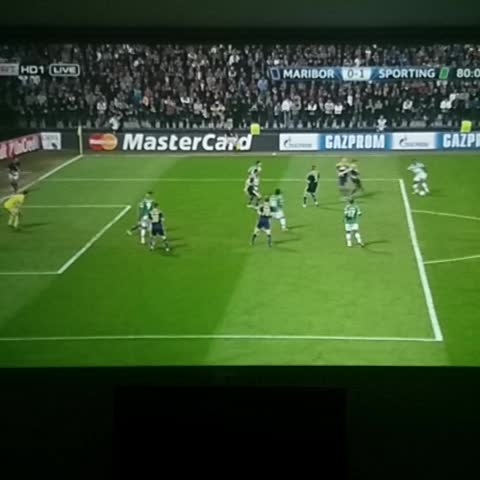El Turcos post on Vine - Maribor 0 Sporting 1  Gol Nani - El Turcos post on Vine