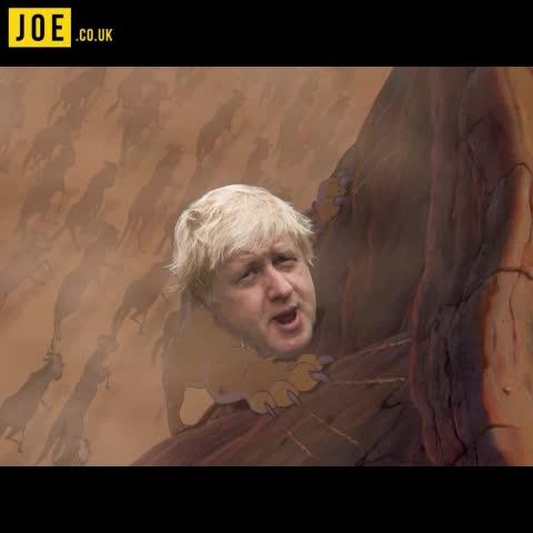 - Vine by JOE.co.uk