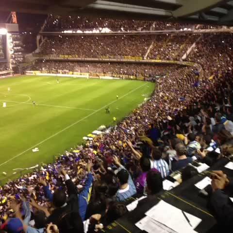 Boca Juniorss post on Vine - ¡Fiesta azul y oro! - Boca Juniorss post on Vine
