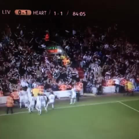 Hearts FC Supporterss post on Vine - Just look at those celebrations 😍 #HMFC #LFC - Hearts FC Supporterss post on Vine